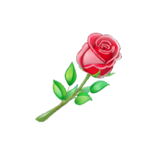 Rs、晴天陪玩收到礼物玫瑰