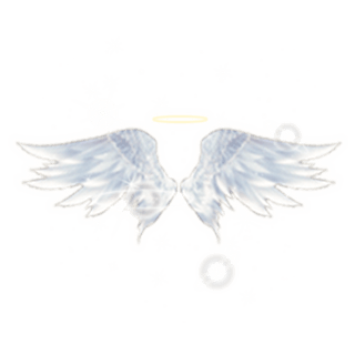 坠入爱河陪玩收到礼物天使之翼