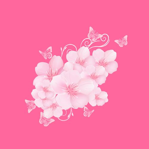 陈长豆陪玩收到礼物浪漫樱花