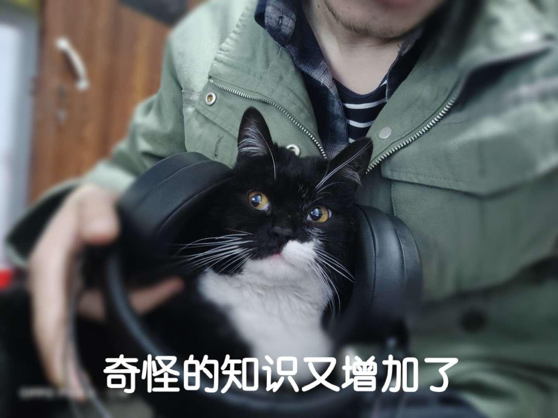 陪玩妹子Ming三平台的照片4